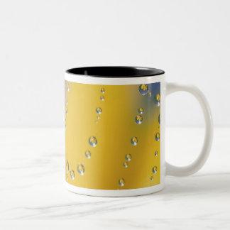 Primer de la tela de araña con descensos de rocío taza de café