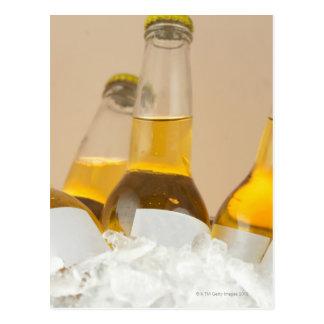 Primer de las botellas de cerveza en hielo tarjetas postales