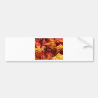 Primer de las hojas de otoño pegatina de parachoque