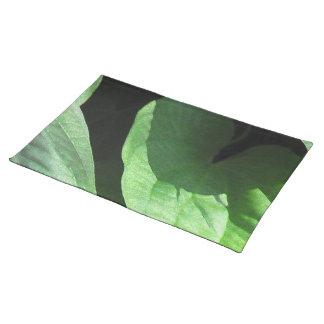 Primer de las hojas en luz y sombra manteles
