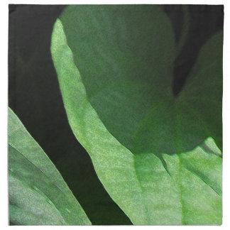 Primer de las hojas en luz y sombra servilletas imprimidas