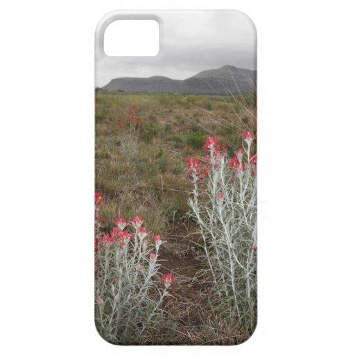Primer de las plantas de desierto, Del Río, Tejas, iPhone 5 Case-Mate Cárcasa