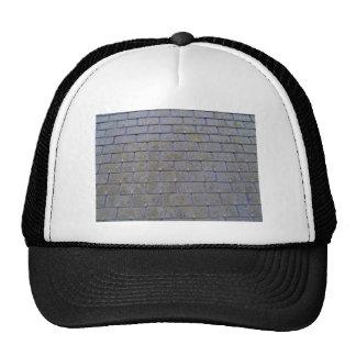 Primer de las tejas de tejado con los liquenes gorra