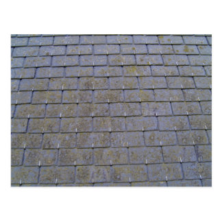 Primer de las tejas de tejado con los liquenes tarjetas postales