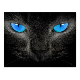 Primer de los ojos azules del gato negro postales