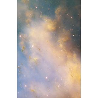 Primer de M27 la nebulosa de la pesa de gimnasia