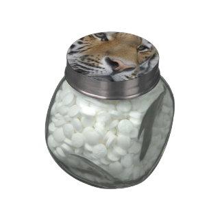 Primer de Tigerface Frascos De Cristal Jelly Belly