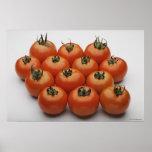 Primer de tomates póster