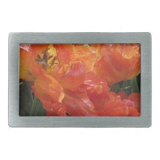 Primer de tulipanes anaranjados con las gotitas en hebilla de cinturón rectangular