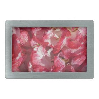 Primer de tulipanes coloridos con las gotitas en hebillas cinturon rectangulares