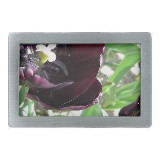 Primer de tulipanes púrpuras con las gotitas en hebillas cinturon rectangulares