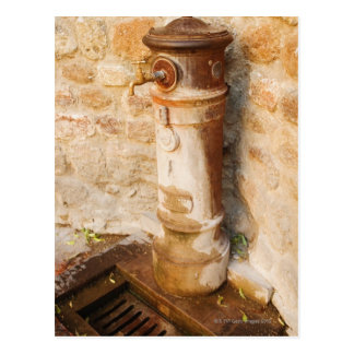 Primer de un grifo, provincia de Siena, Toscana, Tarjetas Postales