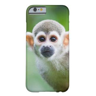 Primer de un mono de ardilla común funda de iPhone 6 barely there