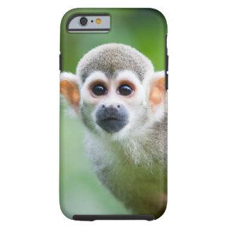Primer de un mono de ardilla común funda resistente iPhone 6
