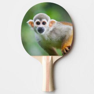 Primer de un mono de ardilla común pala de ping pong