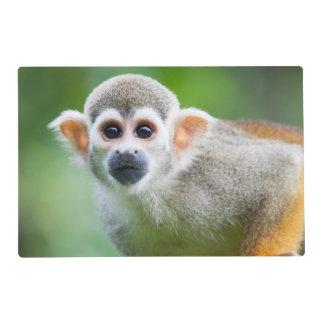 Primer de un mono de ardilla común salvamanteles