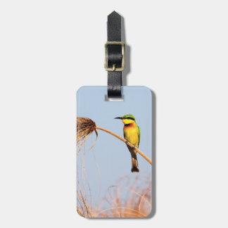 Primer de un pequeño pájaro del abeja-comedor etiquetas maletas