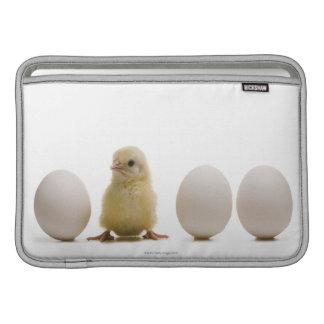 Primer de un polluelo del bebé con tres huevos funda  MacBook
