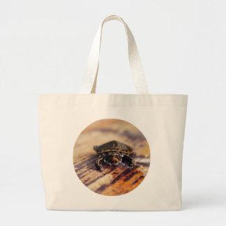 Primer de una tortuga pintada bebé bolsas