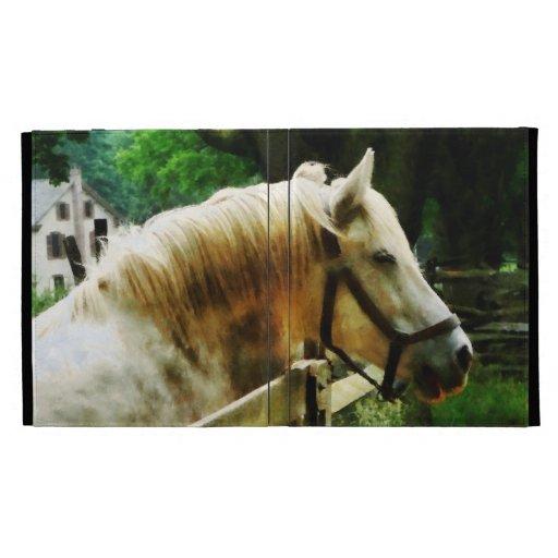 Primer del caballo blanco