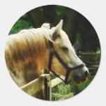 Primer del caballo blanco pegatina redonda