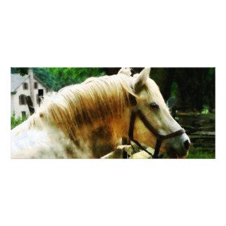 Primer del caballo blanco diseño de tarjeta publicitaria