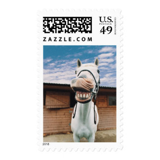 Primer del caballo con la boca abierta estampillas
