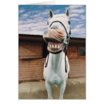 Primer del caballo con la boca abierta tarjetón