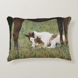 Primer del caballo y del potro del bebé cojín decorativo