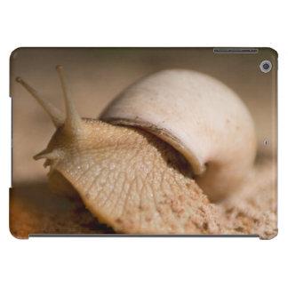 Primer del caracol, planos de USAngu, Madibira Funda iPad Air