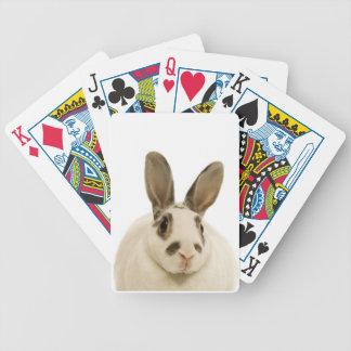 Primer del conejo barajas de cartas