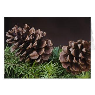 Primer del cono del pino tarjeta de felicitación