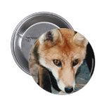Primer del Fox Pin