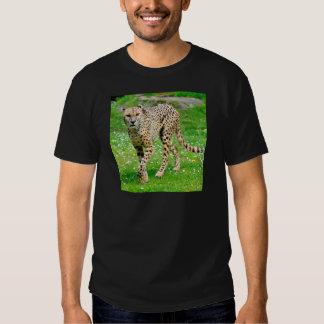 Primer del guepardo africano poleras
