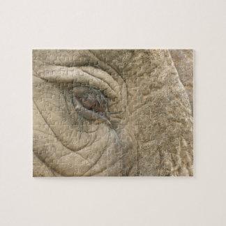 Primer del ojo del elefante puzzle