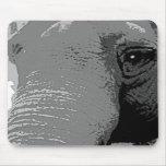 Primer del ojo del elefante tapetes de raton