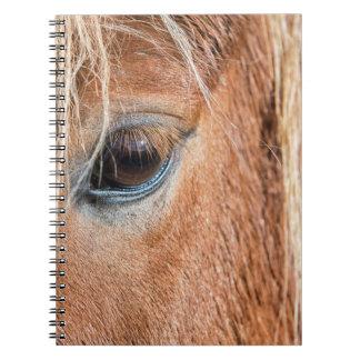 Primer del ojo y de la cabeza del caballo islandés libreta espiral