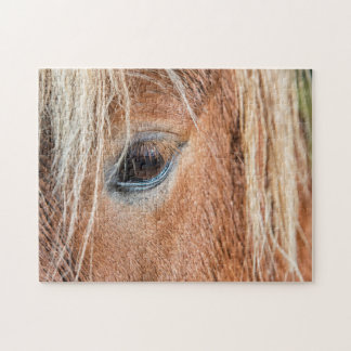 Primer del ojo y de la cabeza del caballo islandés puzzle