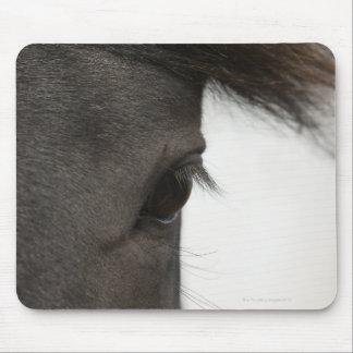 Primer del ojo y del pelo del caballo alfombrilla de raton