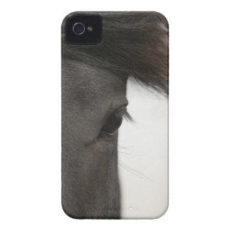 Primer del ojo y del pelo del caballo Case-Mate iPhone 4 cárcasas