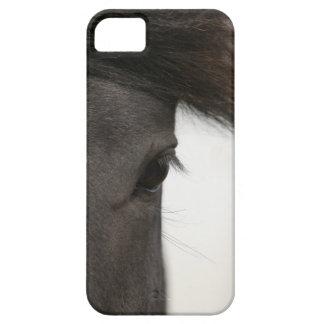 Primer del ojo y del pelo del caballo iPhone 5 Case-Mate fundas
