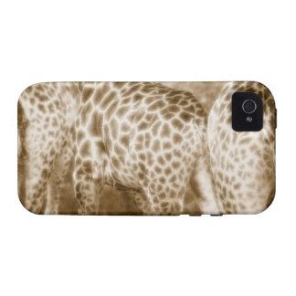 Primer del parque nacional de Kruger de las jirafa Case-Mate iPhone 4 Fundas