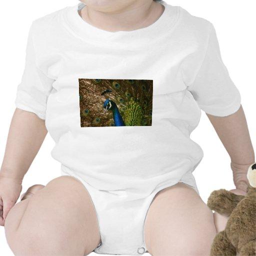 Primer del pavo real camiseta