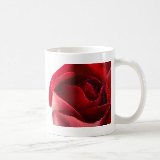 Primer del rosa rojo taza básica blanca