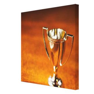 Primer del trofeo lienzo envuelto para galerías