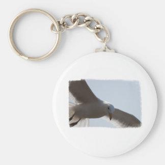 Primer del vuelo de la gaviota llavero redondo tipo pin