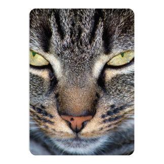 Primer gris de la cara del gato invitación 12,7 x 17,8 cm