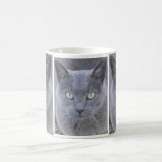 Primer gris de la cara del gato taza básica blanca