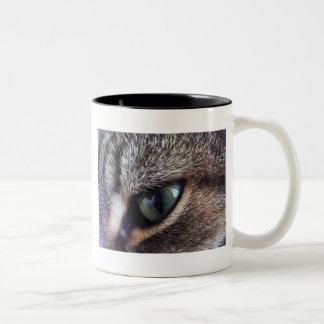 Primer gris de ojos verdes del ojo de gato de Tabb Tazas De Café
