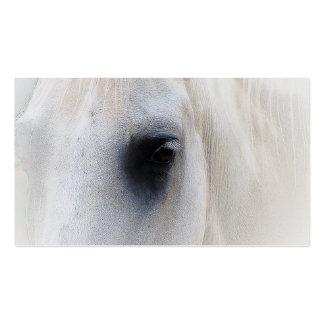 Primer hermoso del caballo blanco tarjetas de visita